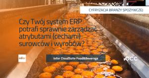 System ERP zarządzanie